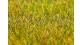 Train électrique : FALLER F180484 - Fibres PREMIUM errants, pelouse, longtemps, vert clair, 30 g