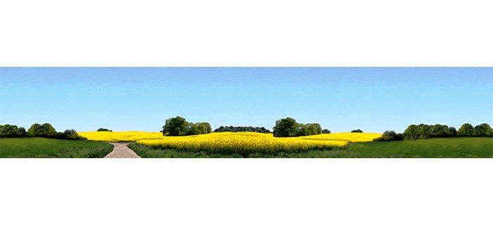 Train électrique : FALLER F180504 - Arrière plan fleuri