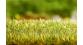 FALLER F180691 - Appareil D'Enherbage Gras
