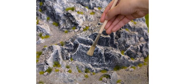 noch plaque de rocher 58470