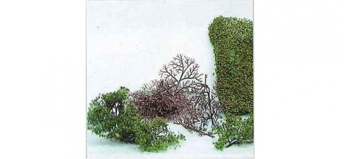 Heki 1530 15 buissons à monter, 2-6 cm