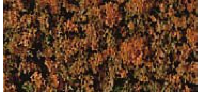 Heki 1557 Flocage brun automne