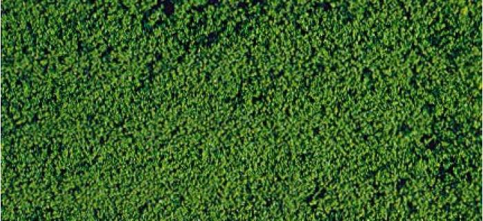 HEKI 1612 Microfeuillage, vert foncé