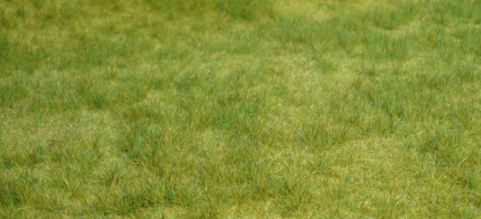 HEKI 1841 herbes printemps