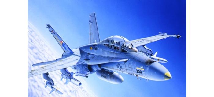 Maquettes : ITALERI I016 - F/A-18C/D Wild Weasel