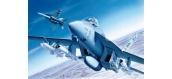 Maquettes : ITALERI I083 - F/A-18E Super Hornet