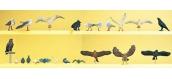 PREISER 10169 Oiseaux (Pigeons, Corbeaux, etc…)