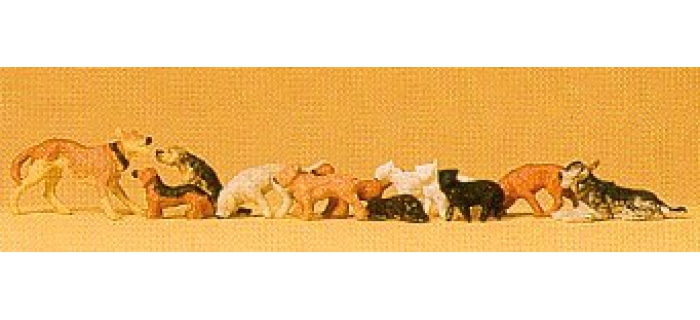 PR14165 Chiens et chats