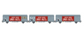Modelisme ferroviaire LSMODEL LSM30658 - Coffret de 3 wagons couvert iK EVS logo
