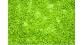 Train électrique : NOCH NO 07152 - Feuillage, vert clair 100 g