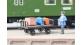 train électrique : NOCH NO 14311 -