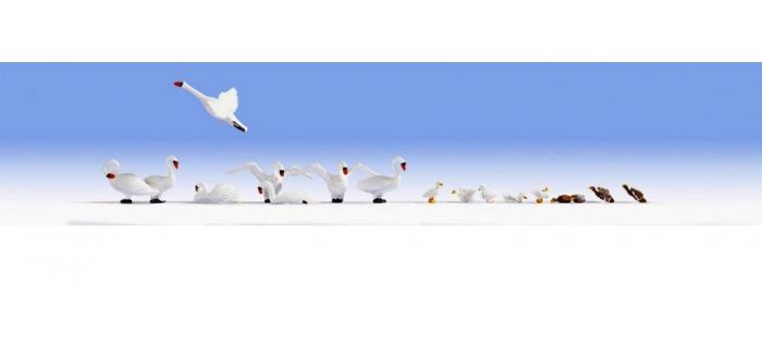 Train électrique : NOCH NO 15774 - Cygnes et canards