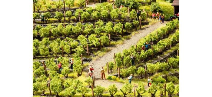 train électrique : NOCH NO 21540 - Pieds de vigne sur socle