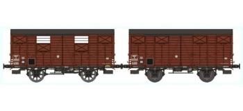 REE WB252 - Set de 2 Wagons COUVERT OCEM 19 Ep.III B