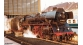 ROCO R72205 - Locomotive à vapeur BR 03.10 des DR